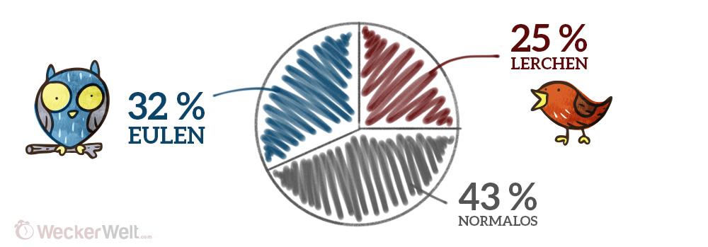 Statistik der Eulen und Lerchen - Frühaufsteher und Langschläfer